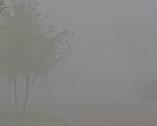 2011-05-19: Foggy Morning